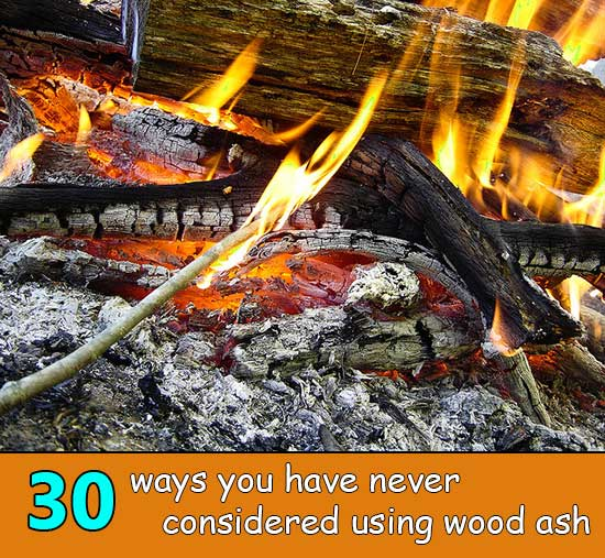 30 ways you have never considered using wood ash