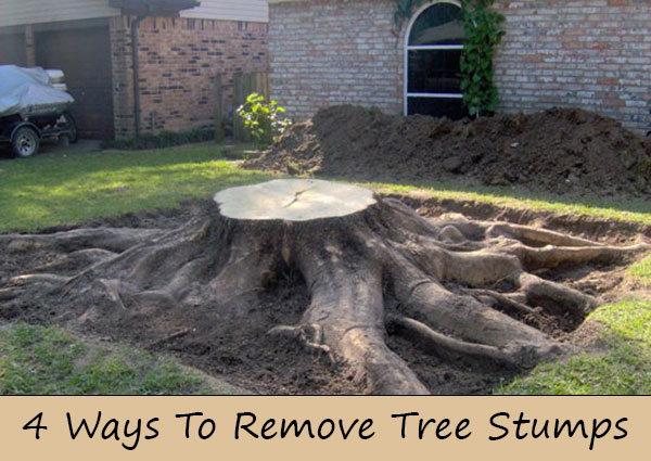 4 Ways To Remove Tree Stumps