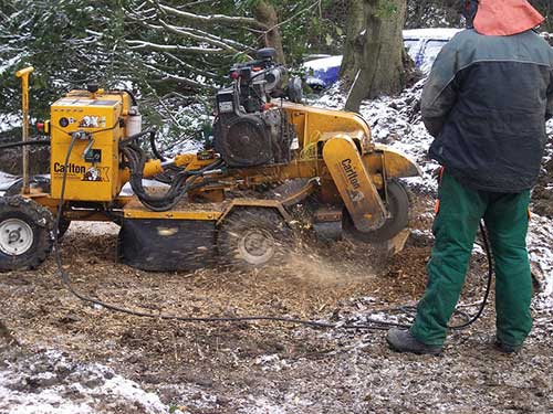 Grinding the Stump