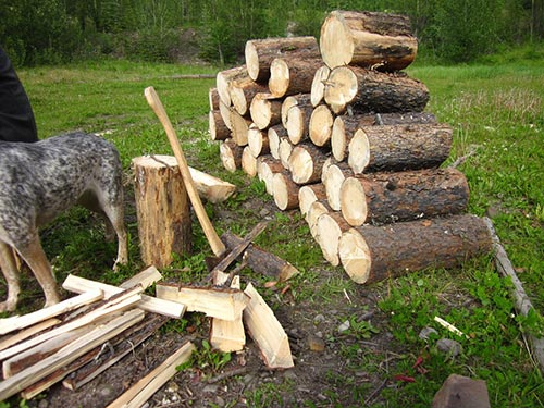 Pile Of Timber : Natural ways to rid your house of spiders home and