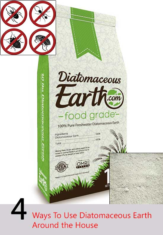 4 Ways To Use Diatomaceous Earth Around Your Home Home And Gardening Ideas