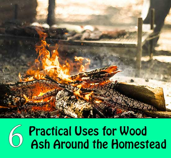 6 Practical Uses for Wood Ash Around the Homestead