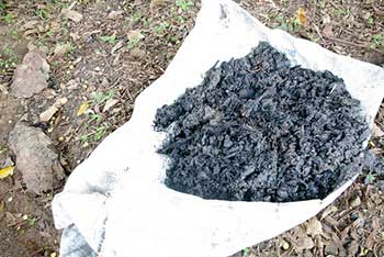 6 Practical Uses For Wood Ash Around The Homestead Home