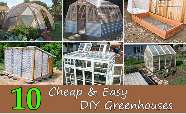 Top 10 Cheap Easy Diy Greenhouses Home And Gardening Ideas
