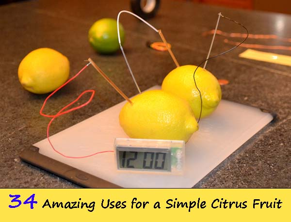 Living Better With Lemons: 34 Amazing Uses for a Simple Citrus Fruit