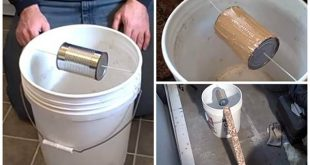 How To Make A 5 Gallon, Self-Resetting Mouse Trap