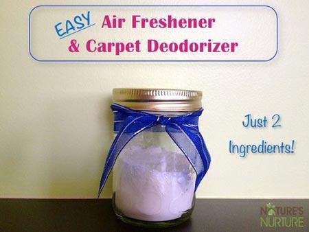 Homemade Air Fresheners: Room & Carpet Deodorizers
