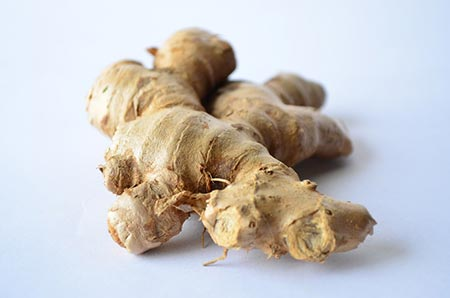 growing-ginger