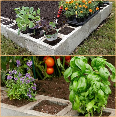 Cement Block Raised Bed