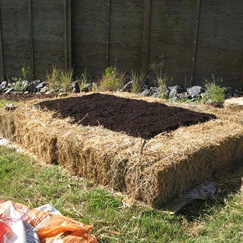 Straw bale garden bed edging