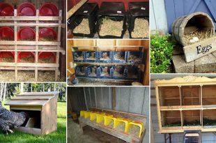 20 Do It Yourself Nesting Box Ideas