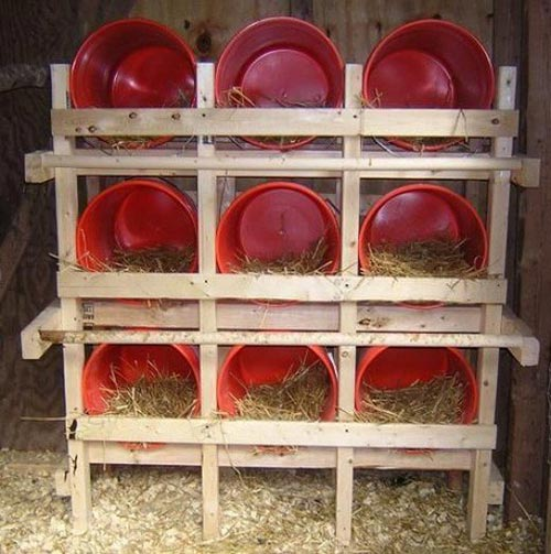 Buckets Make Great Nest Boxes For Your Hens