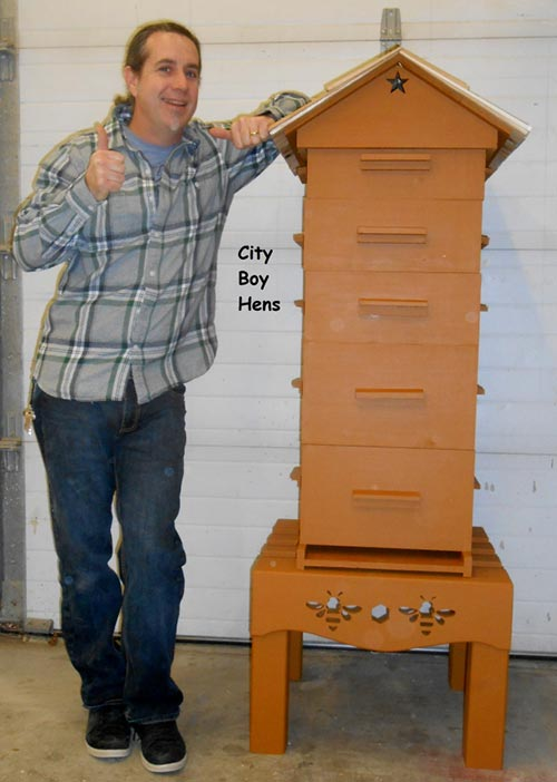 10 awesome diy backyard beehive plans and ideas home and gardening ideas. Black Bedroom Furniture Sets. Home Design Ideas