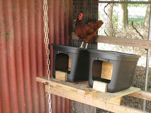 Building a Roll-away Nest Box