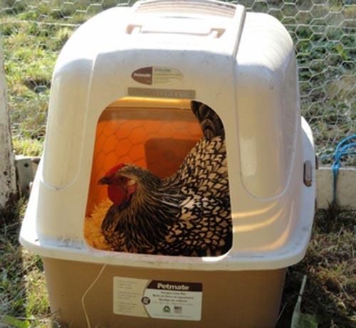 Cat Litter Nesting Box