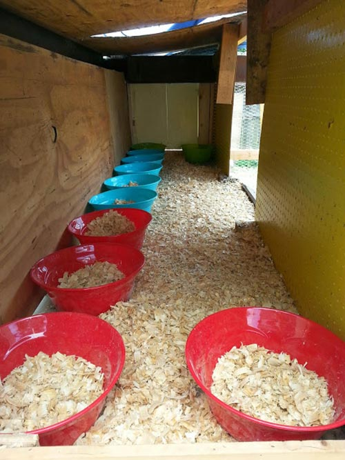 Easy & cheap nesting boxes for hens
