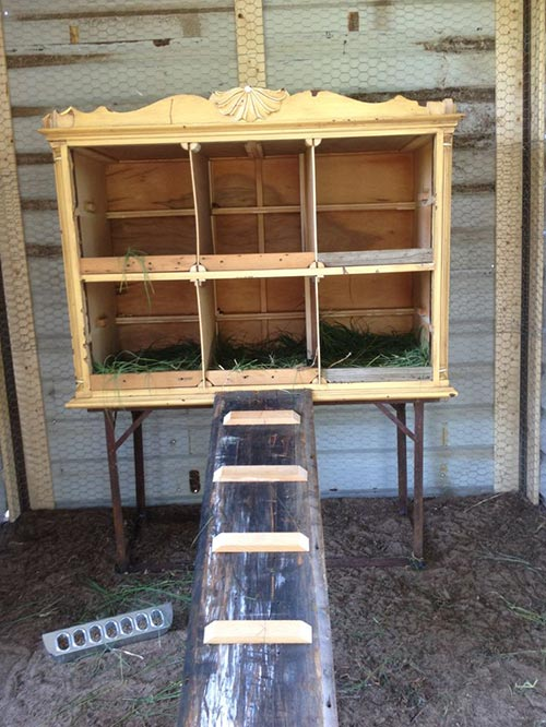 Repurposing Ideas For Chickens