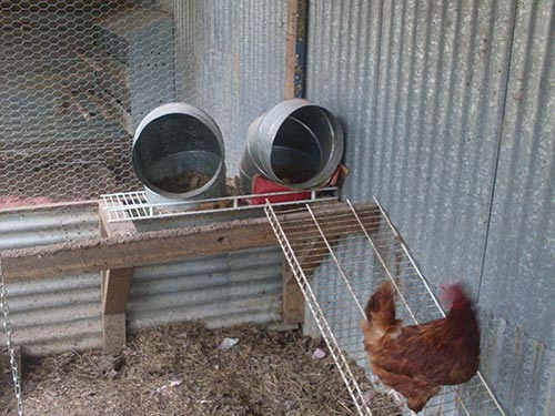 Using HVAC fittings for chicken nest boxes