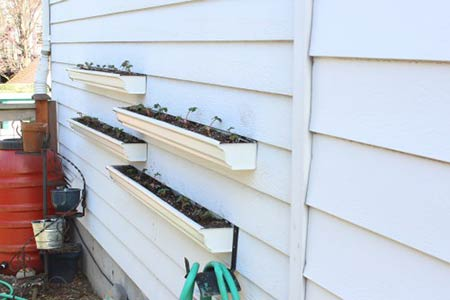 Build a Gutter Garden in Just Two Hours!