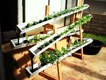 Self-Watering Rain Gutter Garden