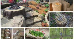 12 Ways To Repurpose Tree Stumps and logs