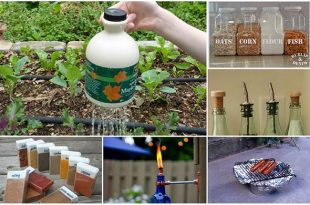 22 Clever Ways To Repurpose Empty Food And Drink Containers