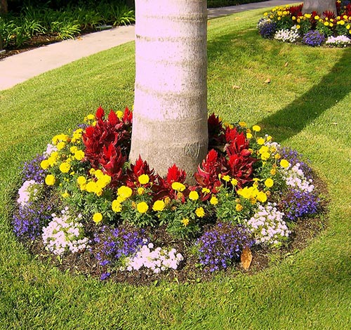 20 budget curb appeal ideas anyone can do home and for Colorful front yard garden plans