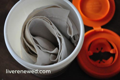 Homemade Reusable Disinfecting Wipes