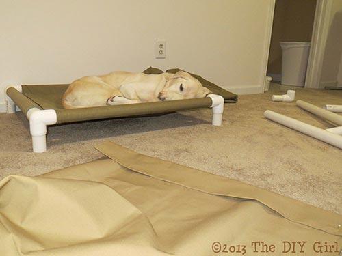 PVC Dog Cot Tutorial