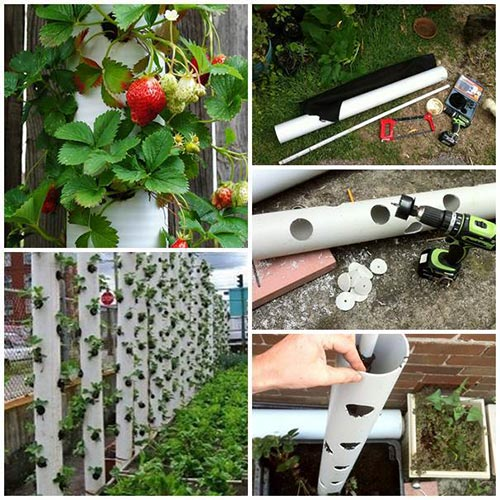 PVC Vertical Strawberry Tube Planter