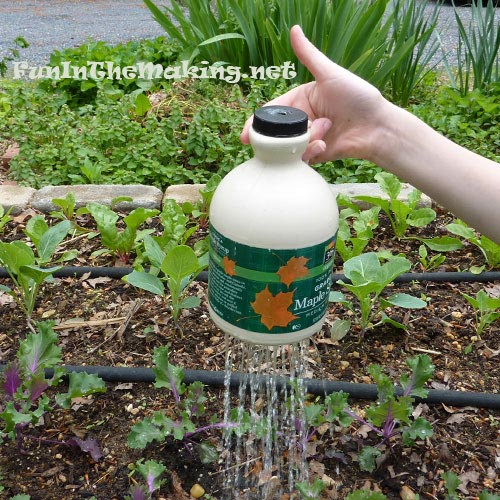 Thumb-controlled Watering Pot Made