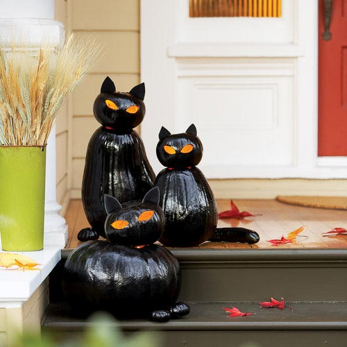 Black cat o'lanterns