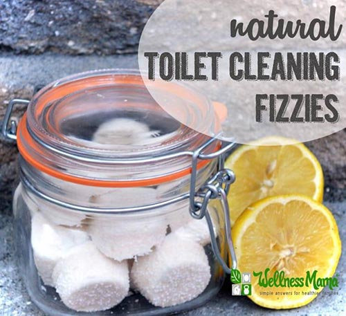 Homemade Natural Toilet Cleaning Fizzies