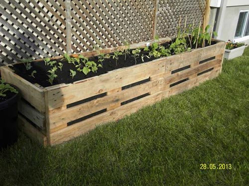 20 diy pallet projects for your homestead home and for Pallet veggie garden