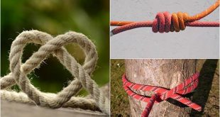 Five Useful Knots For Camping, Survival, Hiking, And More