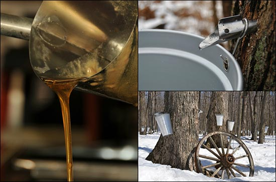 how to make maple syrup recipe