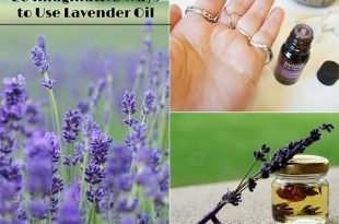20 Imaginative Ways to Use Lavender Oil