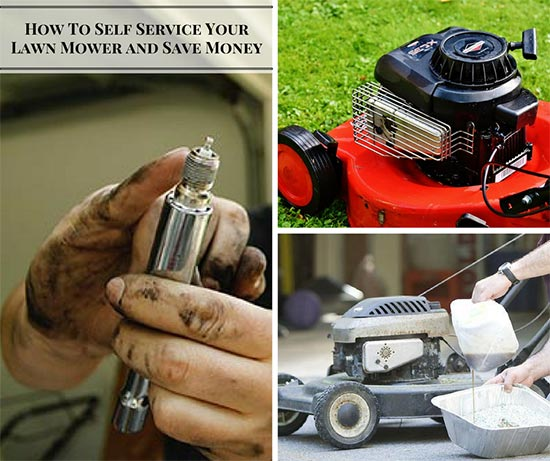 How To Self Service Your Lawn Mower and Save Money