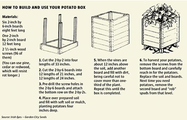 potato box materials, directions and pictures for you to reference at your discretion