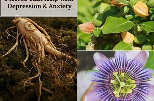 8 Herbs That Help with Depression & Anxiety
