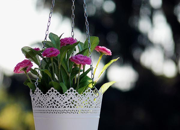 Hanging Baskets With Chain