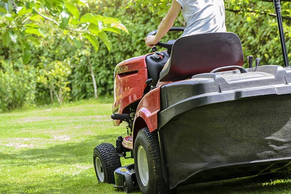 Regularly mow your lawn