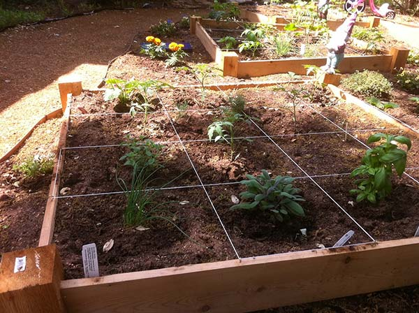 10 steps to planting your square foot garden home and for Square foot garden designs