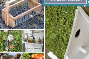 14 DIY Garden Crafts Ideas