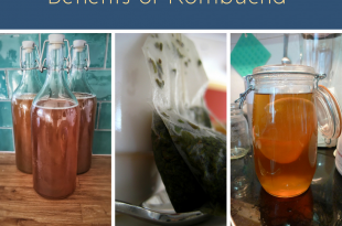 Benefits of Kombucha and How to Make It