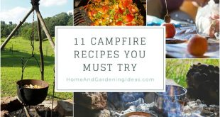 11 Campfire Recipes You Must Try