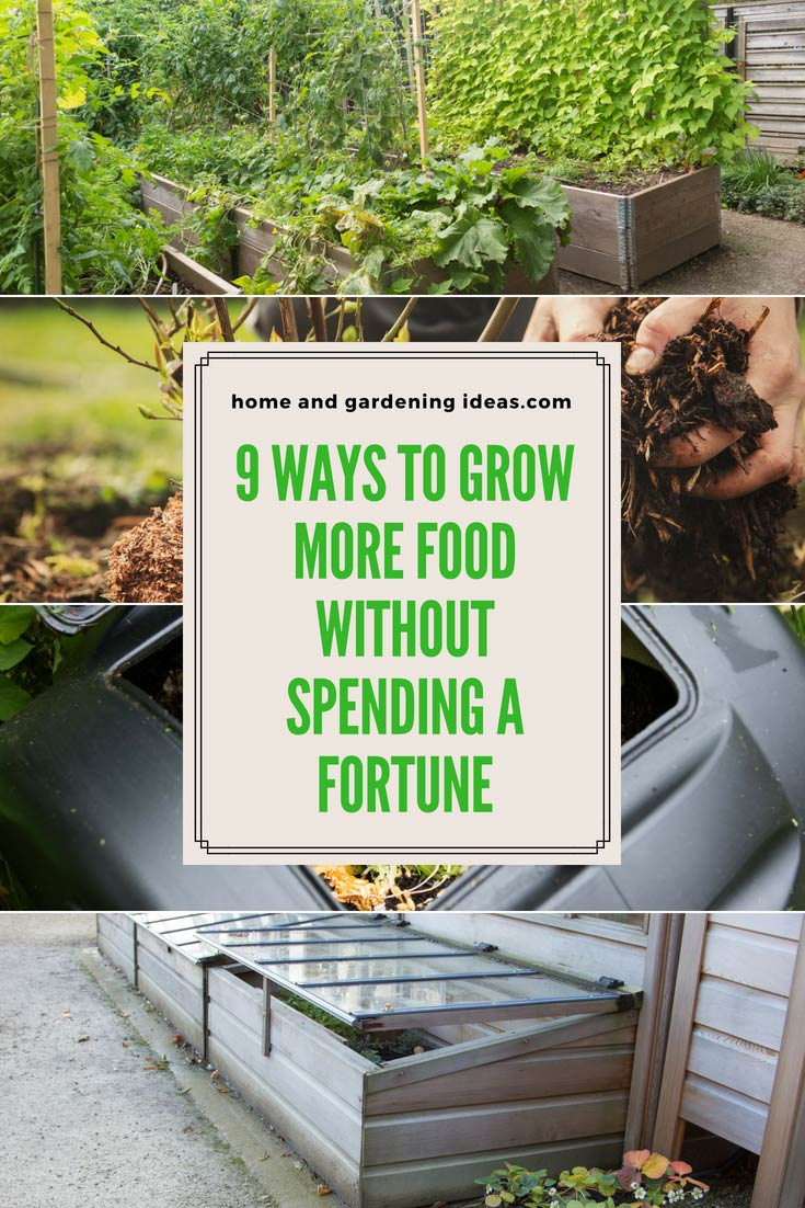 9 Ways to Grow More Food Without Spending Money