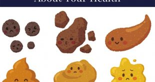 Do You Know What Your Poop Means about Your Health?