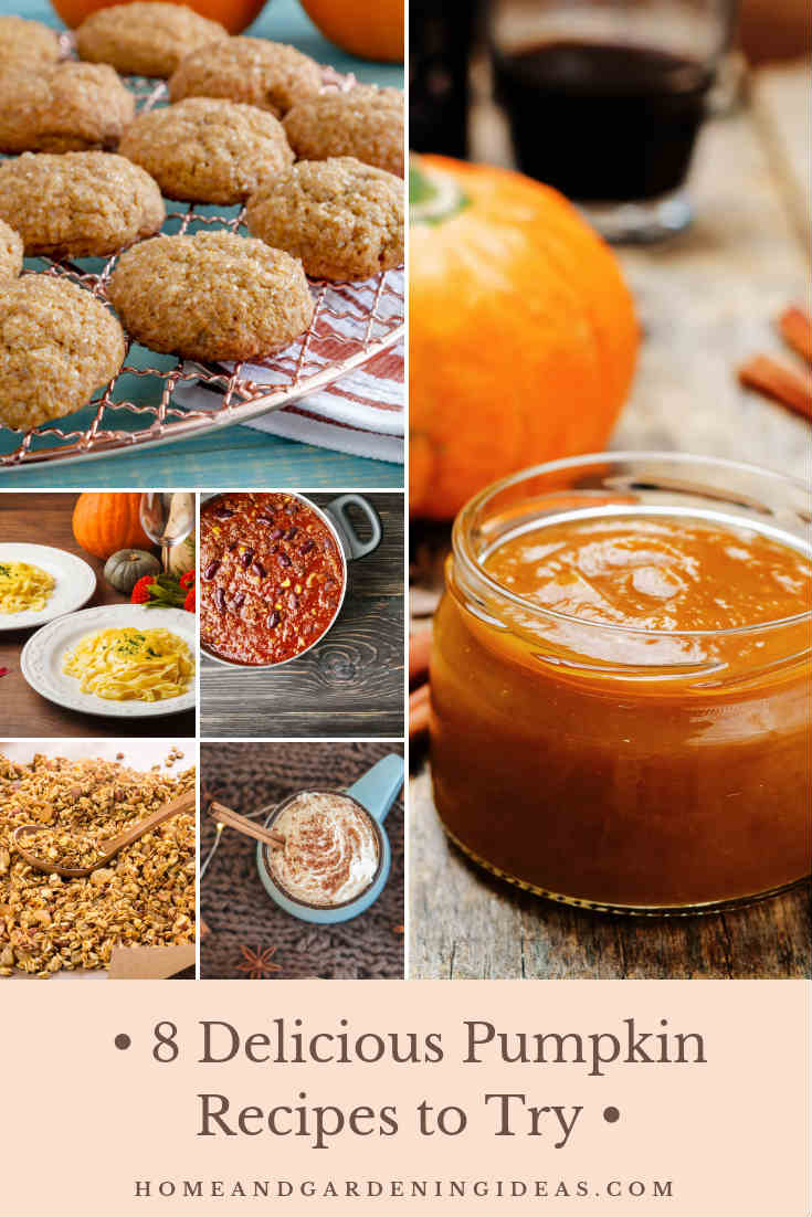 8 Delicious Pumpkin Recipes to Try
