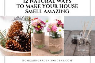 Natural Ways To Make Your House Smell Amazing